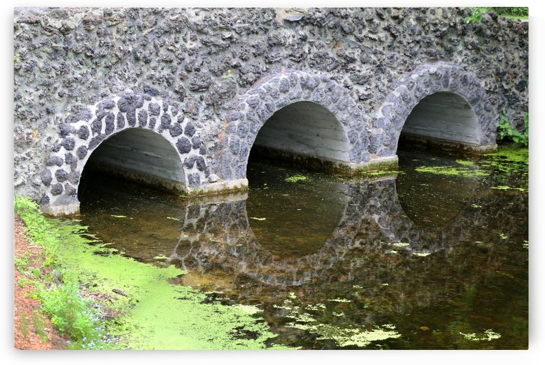 Stone Bridge and Reflection 4 Dow Gardens 3 062618 by Mary Bedy
