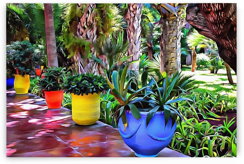 Colorful Plant Pots Marrakech 9 by Dorothy Berry-Lound