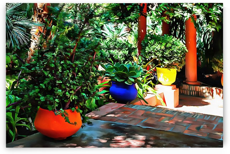 Colorful Plant Pots Marrakech 8 by Dorothy Berry-Lound
