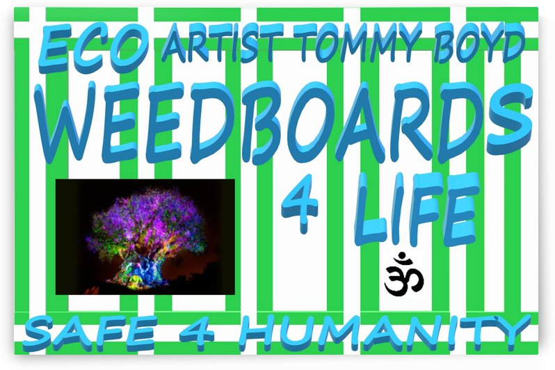 ECO WEEDBOARDS 4 LIFE   ECO ARTIST TOMMY BOYD by KING THOMAS MIGUEL BOYD