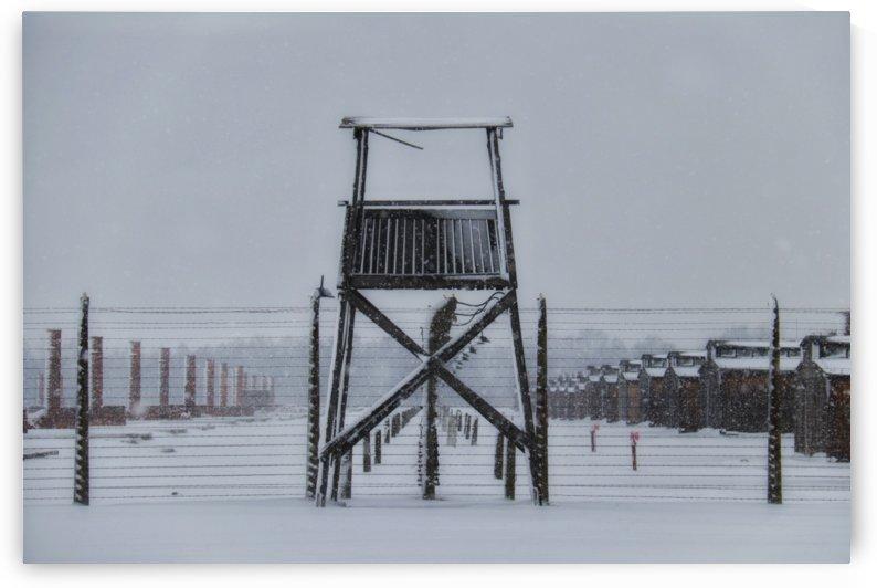 Auschwitz Gun Tower by Wilken Photos