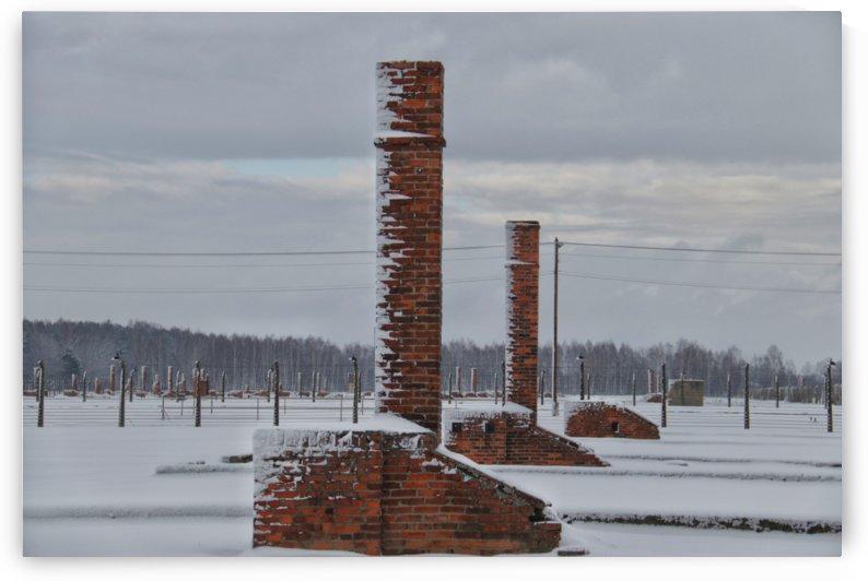 Auschwitz Chimney Stacks by Wilken Photos