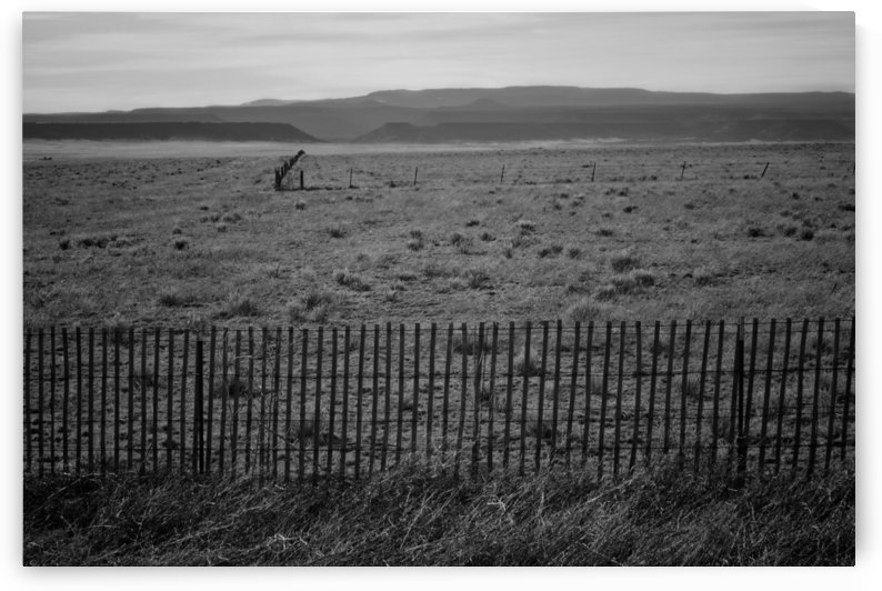 New Mexico Country Side by Wilken Photos