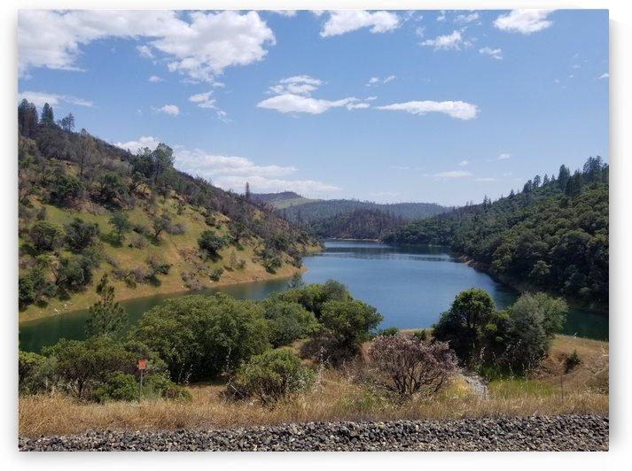 Still Lake  by Cam
