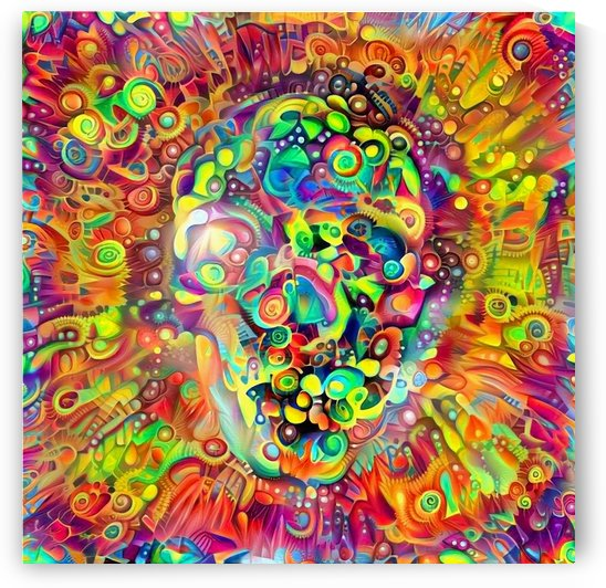 Vivid Skull Silhouette by Bruce Rolff