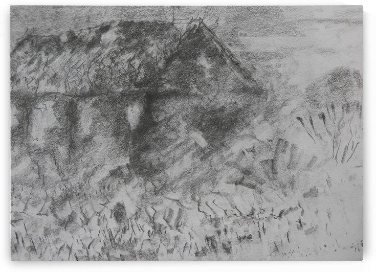 Desolation by Adrian Butt