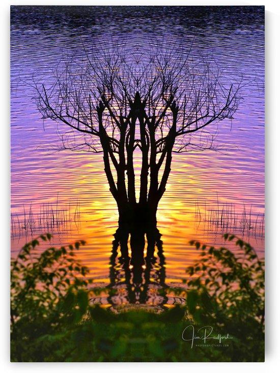 Lakeside Sunset by James Radford