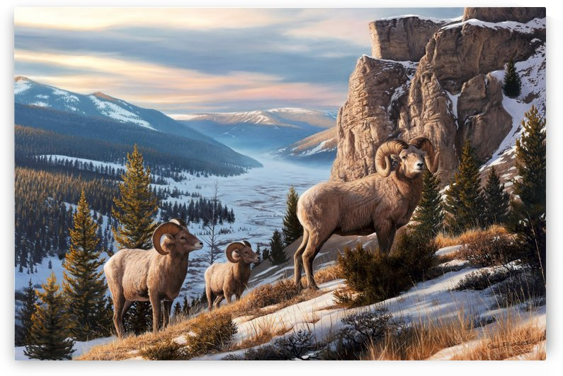 Western Beauty canvas by CRB