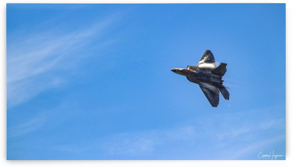 F22 raptor  by By the C Media