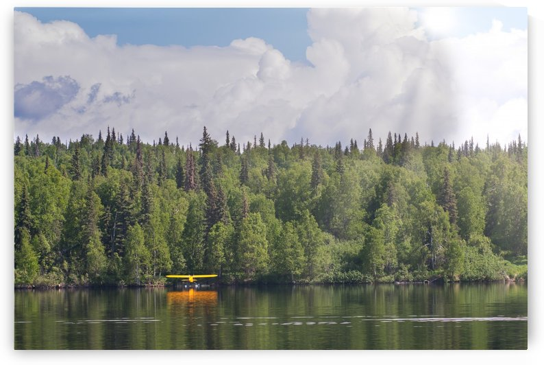 _MG_6310 by Alaska Dreaming