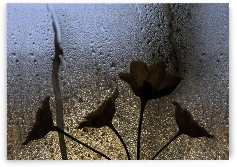 Abstract Rain Flowers by Jaeda DeWalt