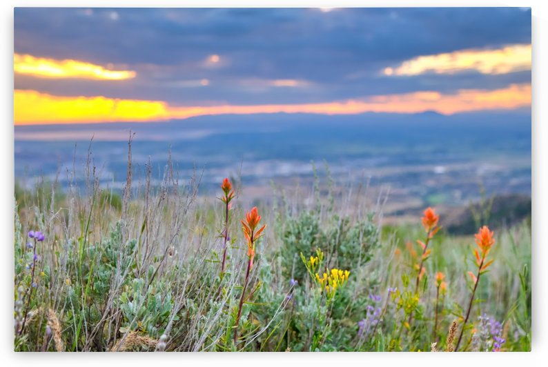 Portneuf Valley at Sunset by Brian J Riley