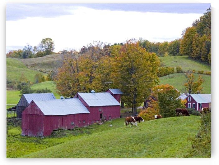 Bucolic Vermont by Eliot Scher