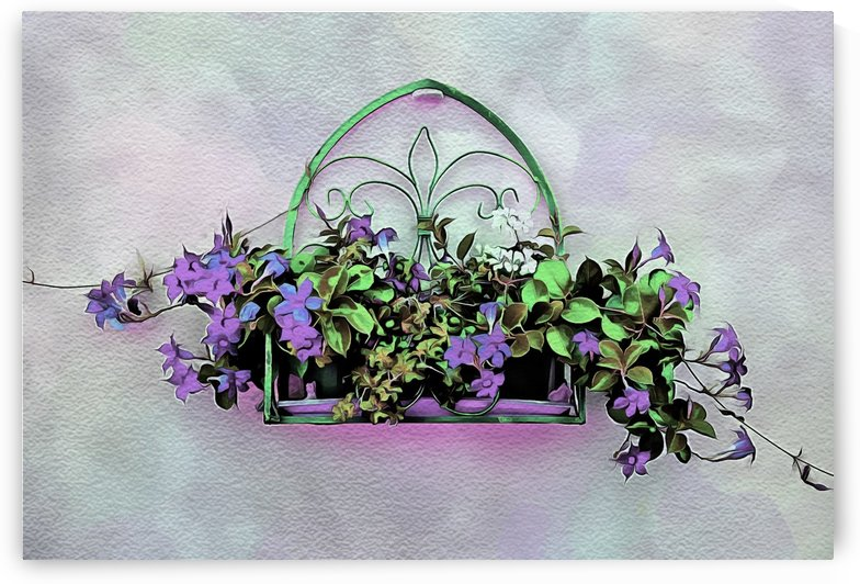 Color My World Purple by Dorothy Berry-Lound