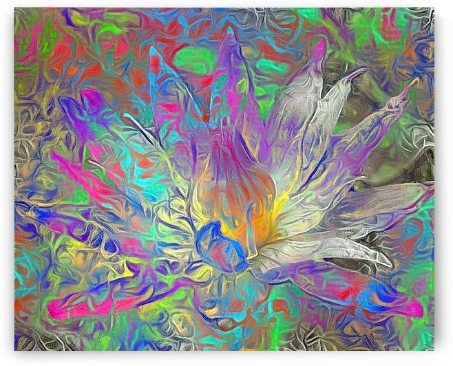 Beautiful Lotus Flower by Bruce Rolff