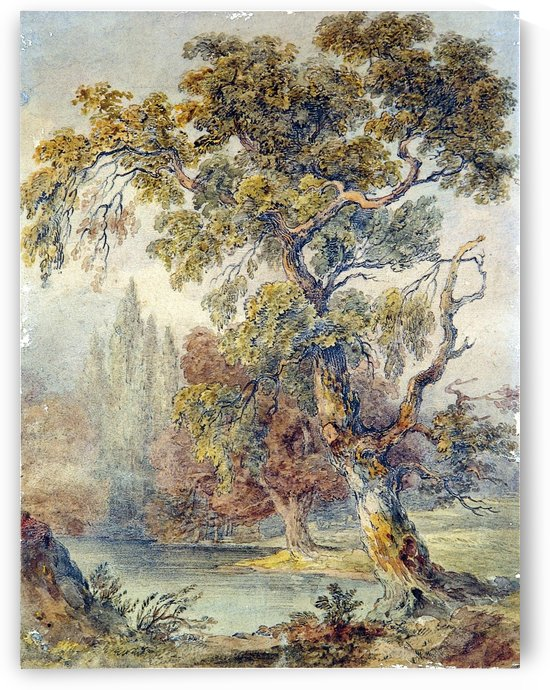 Trees and Pond by John Ruskin
