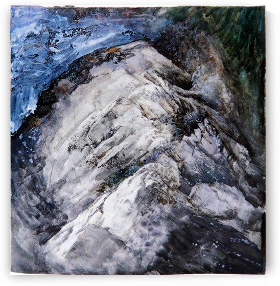 Rocks and Vegetation by John Ruskin