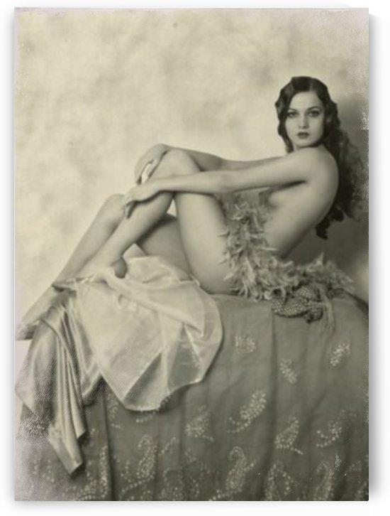 lady woman beautiful vintage  by Shamudy