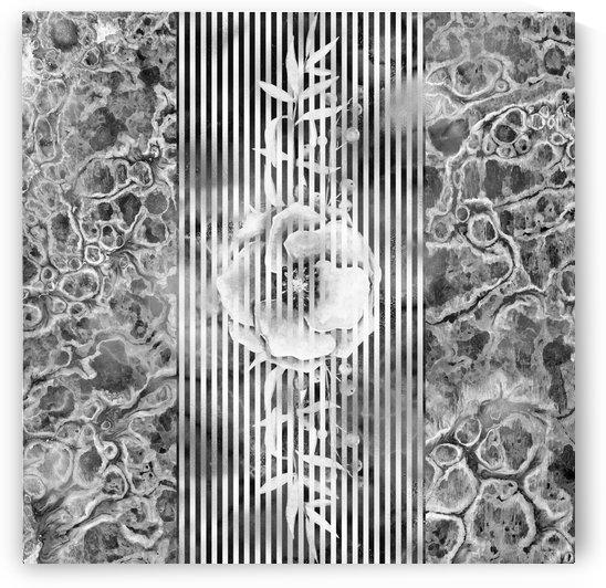 Shades of grey floral Abstract 2 by Gabriella David