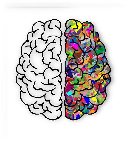 brain mind a i ai anatomy by Shamudy