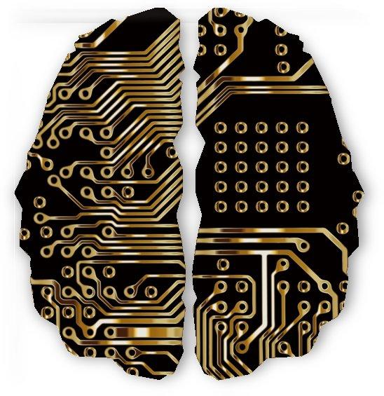 brain circuit board pcb computer by Shamudy