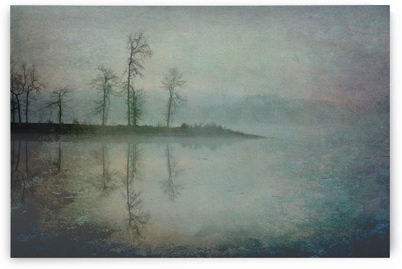 Misty Morning by Ken Johnson Imagery