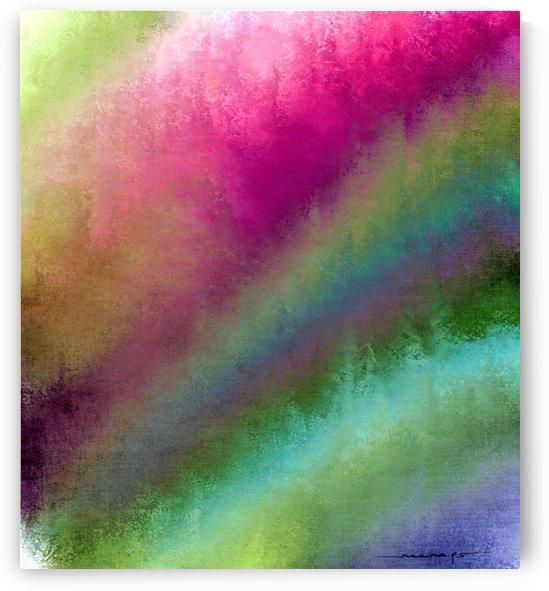 Color Burst - Flower Field by Neena