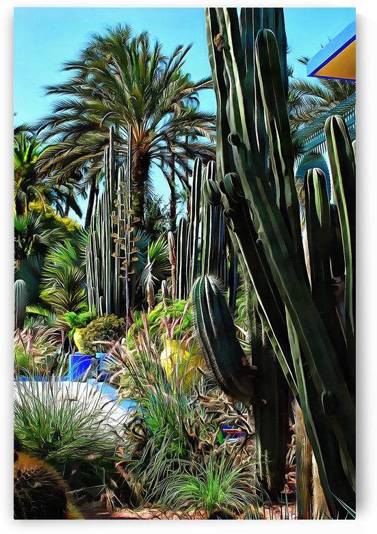 Giant Cacti Jardin Majorelle Marrakech by Dorothy Berry-Lound