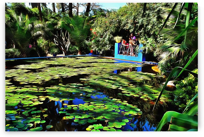 Lily Pond Jardin Majorelle by Dorothy Berry-Lound