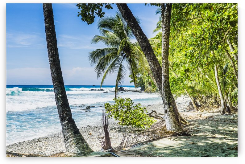Costa rican beach Osa Peninsula Costa Rica by Atelier Knox