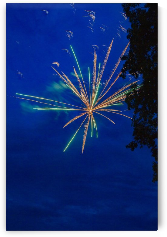Fireworks 2019 8 by William Norton Photography