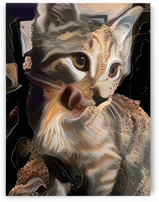 Cute Kitten by Bruce Rolff