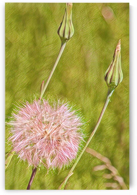 Bee fuel 2 by Sherry Reynard