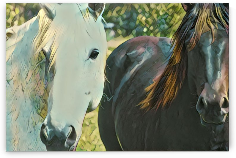 His and hers by Sherry Reynard
