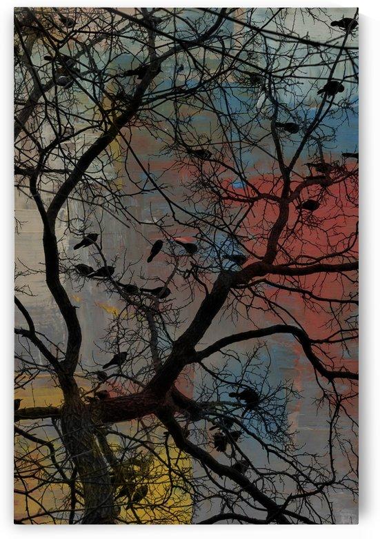 Paint Birds by Kaye