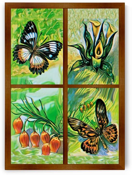 Window to world of nature 1 by Radiy Bohem