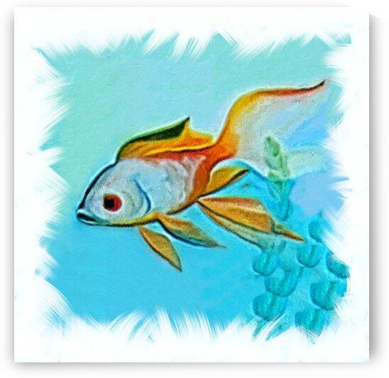 akvafish4 by Radiy Bohem