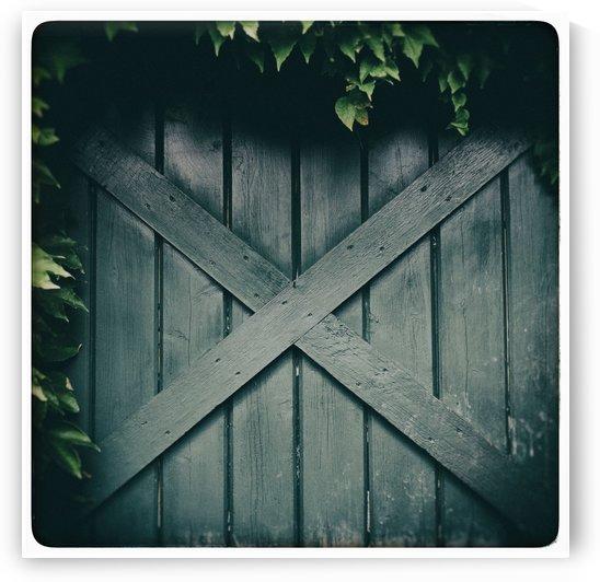 Green Doorway by Alexis Arnold