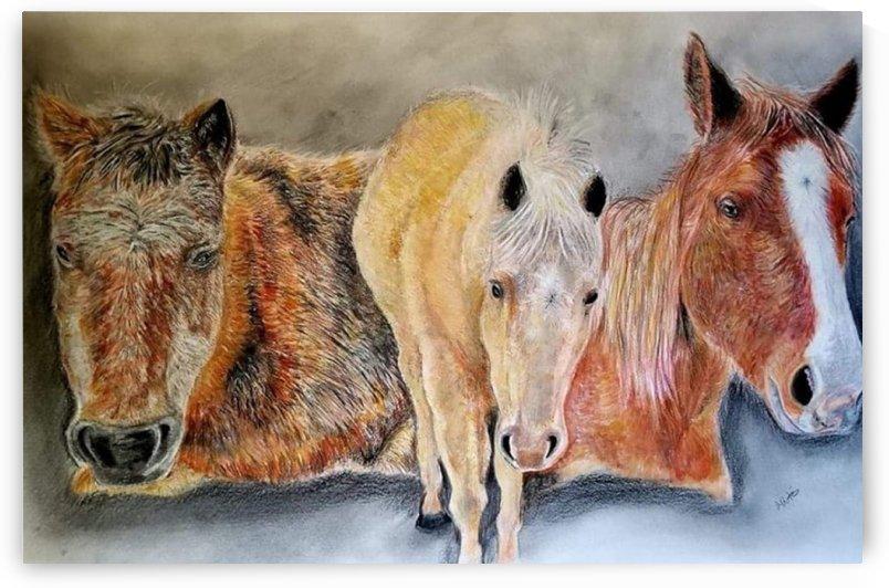 three horses by Oliver Batin