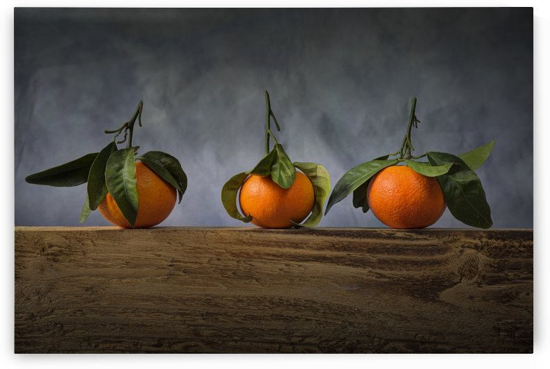 Three satsumas with leaves by Leighton Collins