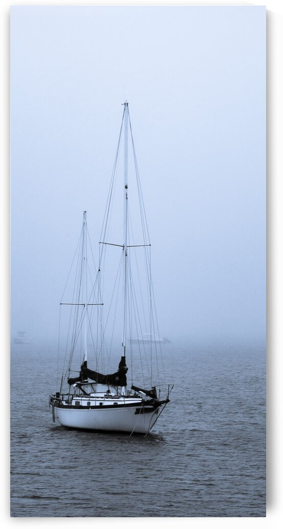 Safe in the Harbor by Dave Therrien