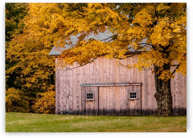 When Fall Comes to New England by Dave Therrien