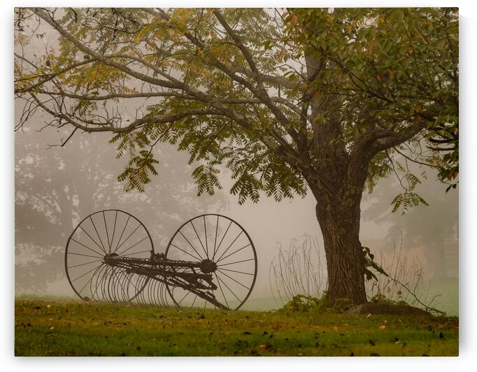 Hollis Foggy Morning by Dave Therrien
