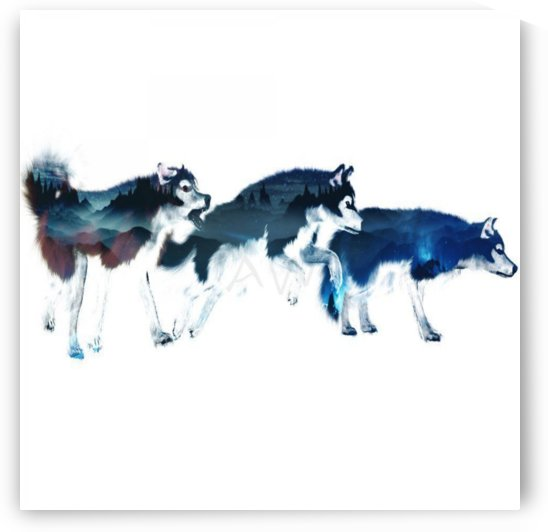 Three Wolves by Art-Works
