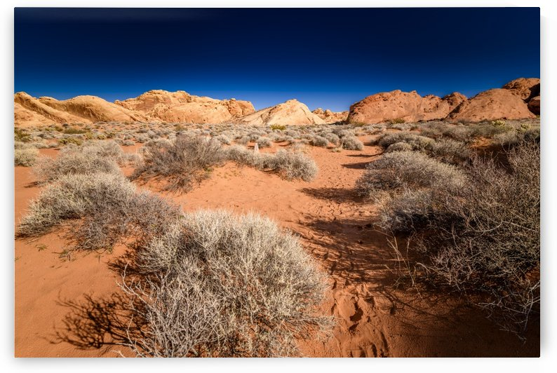 Valley Of Fire by Luis Bonetti