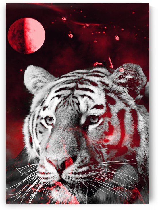 Tiger from the galaxy red by Thula-Photography