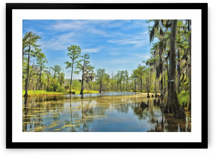 Down on the Bayou - HDR - White Border  - Black Border by Digicam