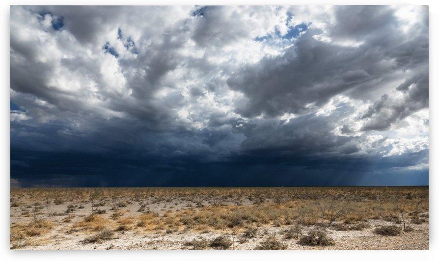 African savanna by Radu Juster Photography
