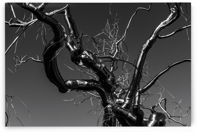 Metal tree by Luis Bonetti