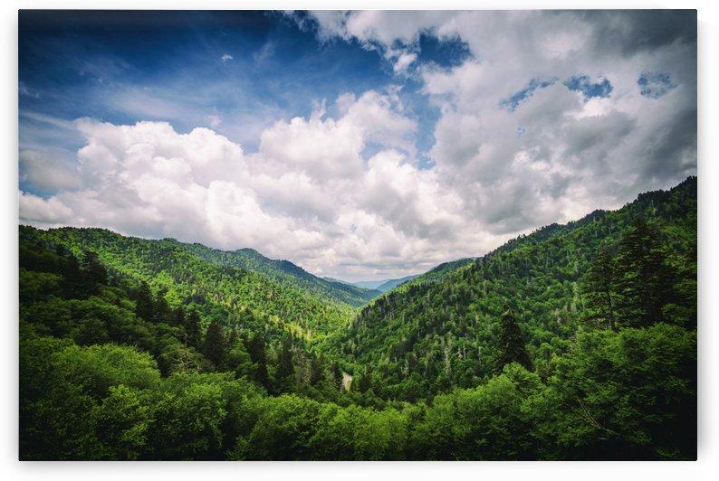 Smokey Mountains Tennessee  by Luis Bonetti